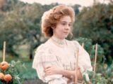 Anne Shirley (Sullivan Entertainment live-action)