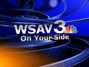 Wsav news 2010