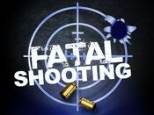 Fatal shooting generic