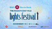 2628547 2017-wls-lights-fest-img