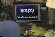 220px-WBZ Promo89