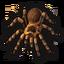 Spider 0