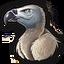 Vulture ver2 0