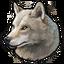 Arctic wolf 0