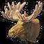 Elk 0