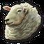 Sheep 0