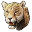 Icon zanzibar leopard 0