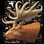 Giant deer 0