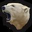 Polar bear 0