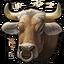 Oxen 0