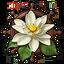 Icon expedition botanical
