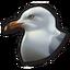 Seagull 0