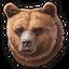 Brown bear 0
