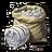 Seeds cotton