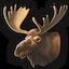 Moose 0