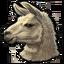 Icon alpacca 0