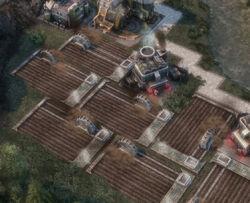 Truffle-farm