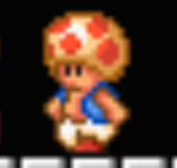 Toad SM3DLand