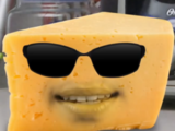 Special Agent Cheese