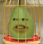 Pearinjail