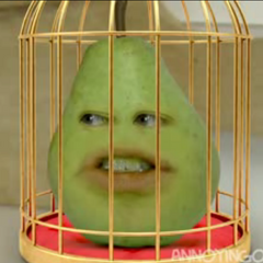 Pear in a cage