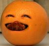 OrangePortal