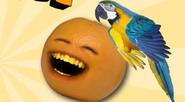 Garret With Orange