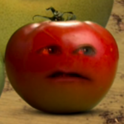 TomatoesAreFRUITS