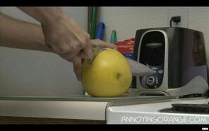 Deathofgrapefruit