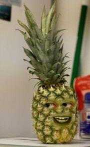 AO Pineapple