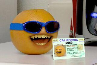 AO Evil Orange