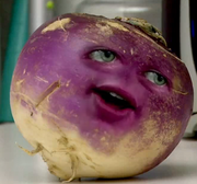AO Turnip