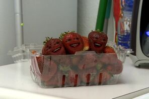 AO Strawberries
