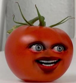 AO Girl Tomato