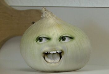 AO Onion