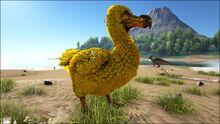 Golden Dodo