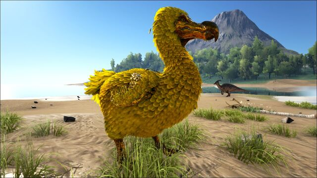 File:Golden Dodo.jpg