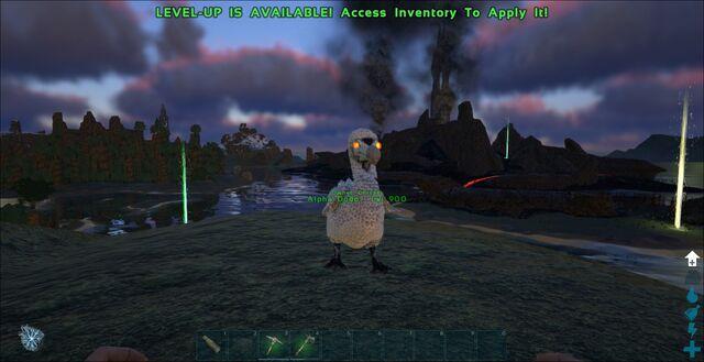 File:Alpha Dodo.jpeg