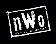 Another New World Order Image