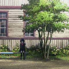 School's yard