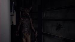 SchweinemannKehrtZurück