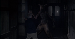SchweinemannTötetAshley