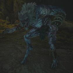 Wolfskönig