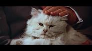 Blofeld-1981-02