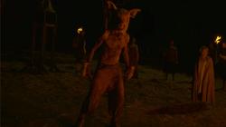 SchweinemannGegenFlora