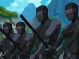 Liga der Schatten (Young Justice)