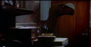 Randy Jurassic Park