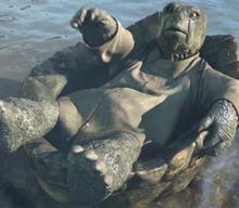 Tortoise John begging for forgiveness