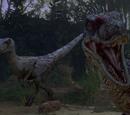 Alpha's Pack (Jurassic Park 3)