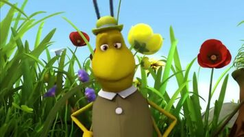 Archie the Cricket (Maya the Bee)